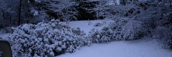 Wintereinbruch 2008